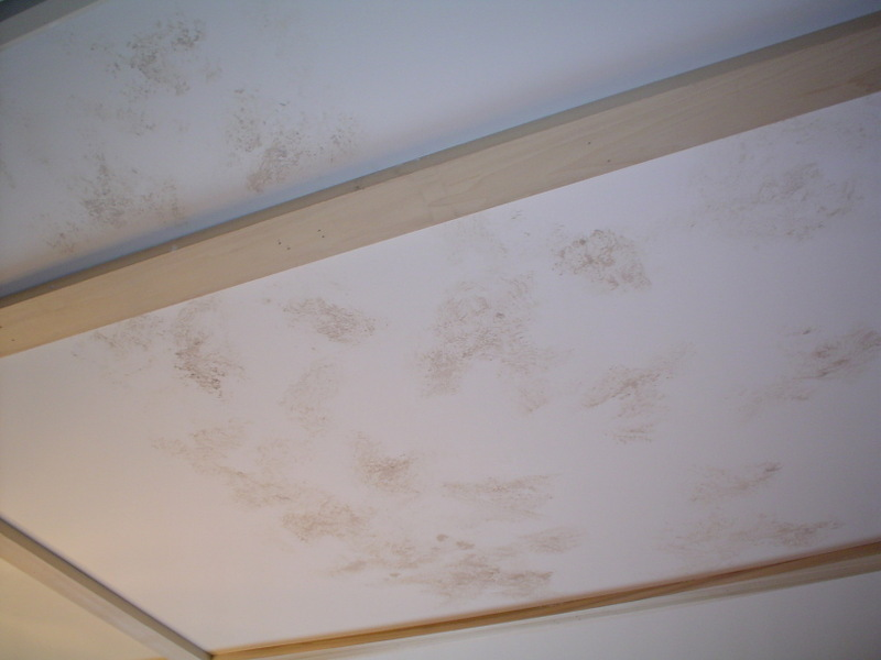 Plaster_on_kit_ceiling