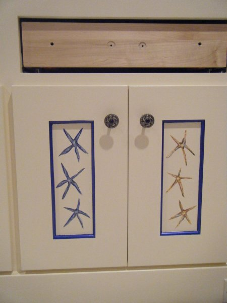 Starfish panels outlined