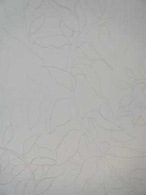 Drawn ferns