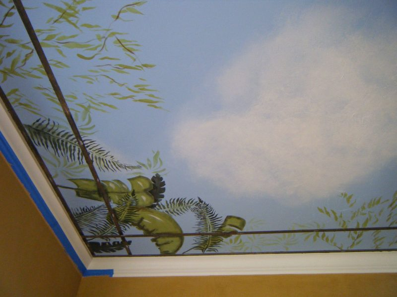 Walls:ceiling corner