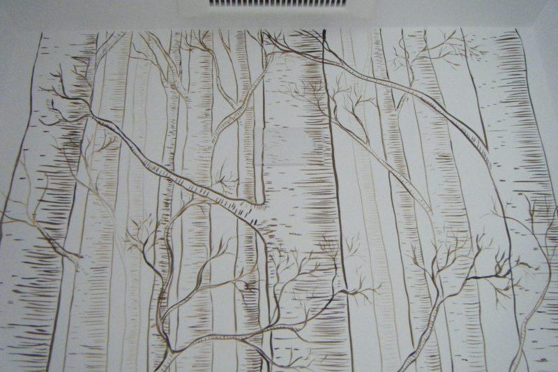 Closer look trees