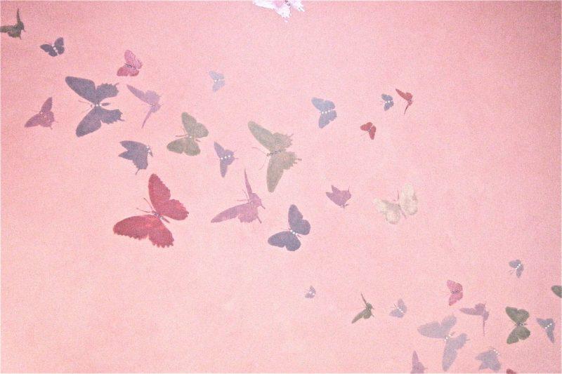Full wall butterflies complete